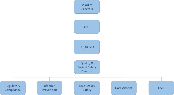 great hospital quality improvement program org chart