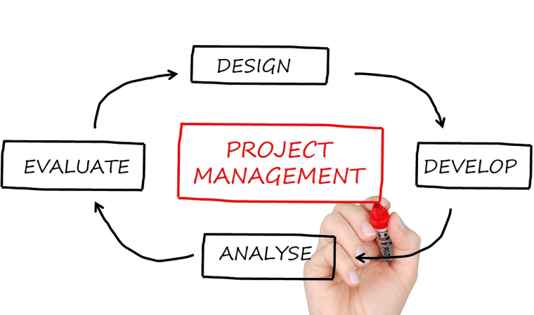pursue a business degee project management