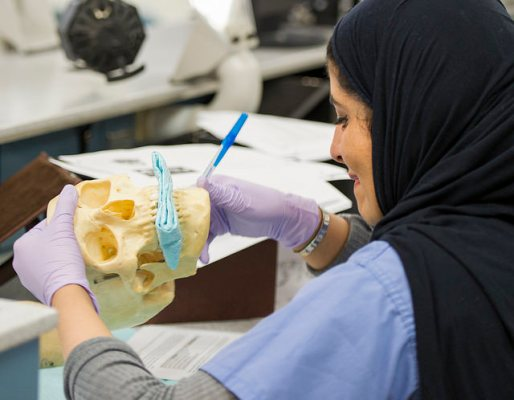 A student from Princess Nourah bint Abdulrahman University (PNU) College of Dentistry in Riyadh, Saudi Arabia, completes a lab activity during the monthlong enrichment program at TAMBCD in Dallas.
