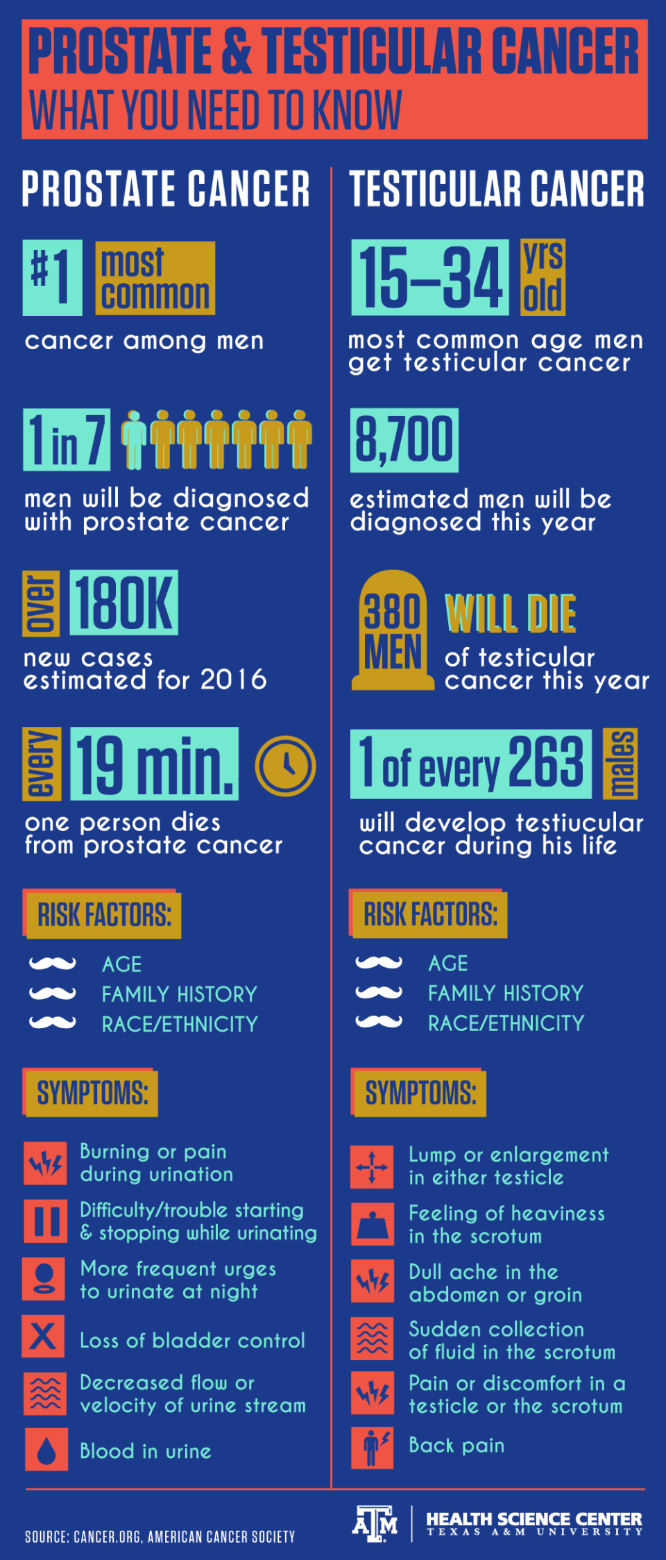 Prostate and Testicular Cancer