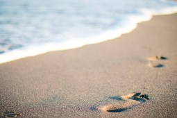 Flesh-eating bacteria_a picture of footsteps in the sand walking parallel to the ocean water