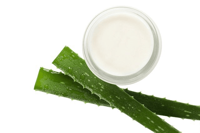 Herbal Home Remedies For Cystic Acne Aloe Vera