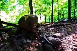 Visionsong Nemeton Symbol Stone