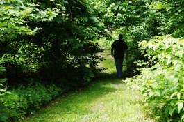 Strolling under Maiden's Bower