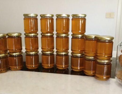 Barattoli con miele e favo