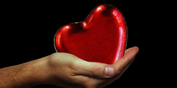 Preserving Your Heart – How Healthy Aging Affects Your Ticker