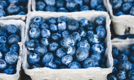 Blueberries Can Help Lower Blood Pressure