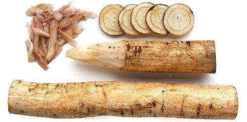 Burdock Root-Makanan Beralkali Untuk Kurangkan Asid Urik Pesakit Gout