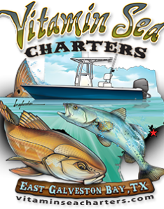 Img also galveston bay fishing guide charter texas rh vitaminseacharters