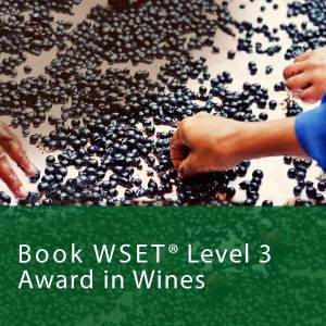 book wset level 3