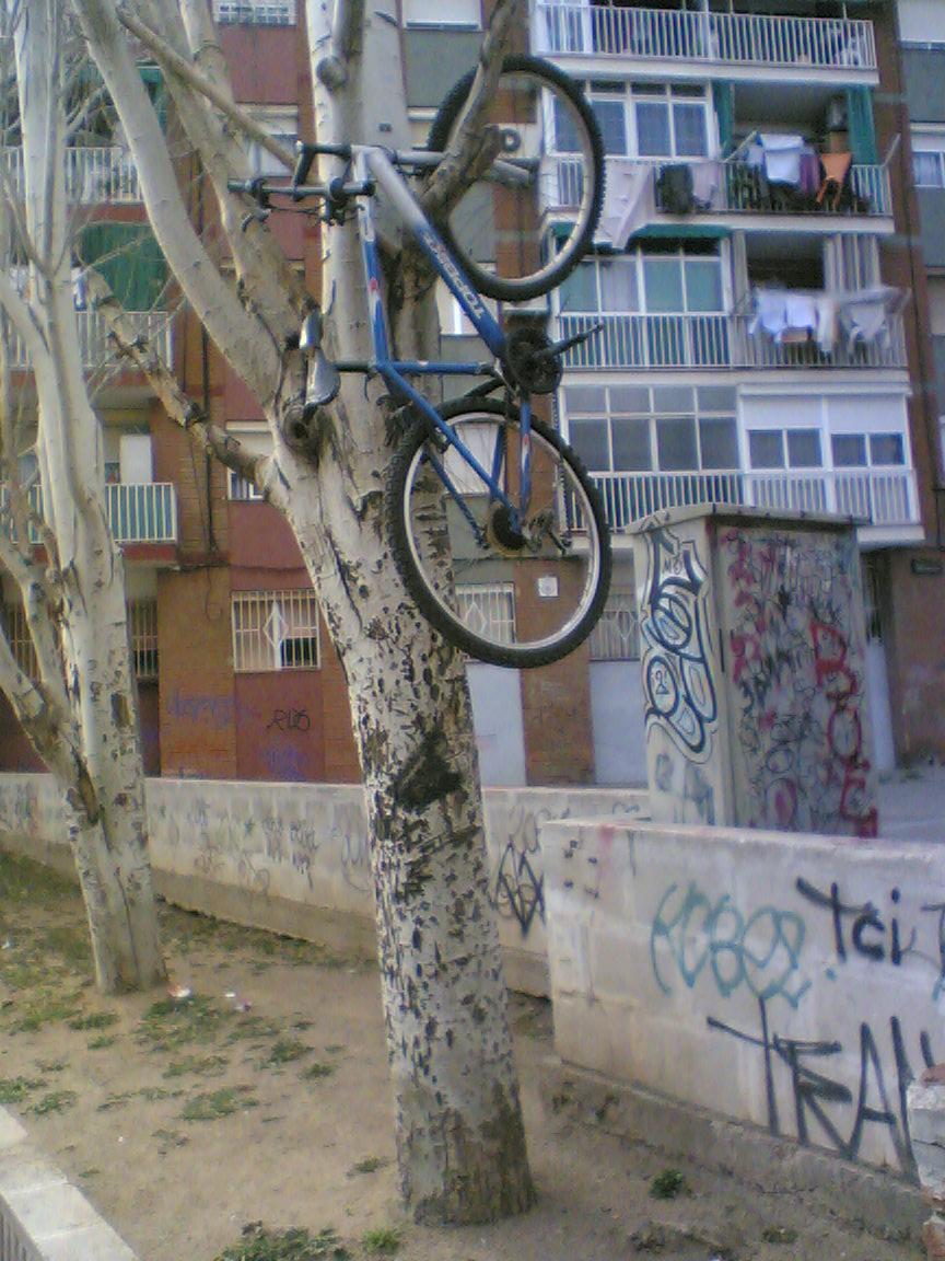 bicing 1