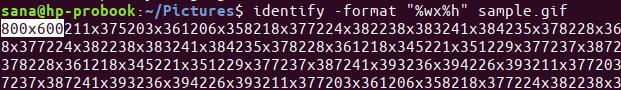 Identify image format