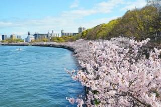 Kansai Kema-SakuraNoMiya Park