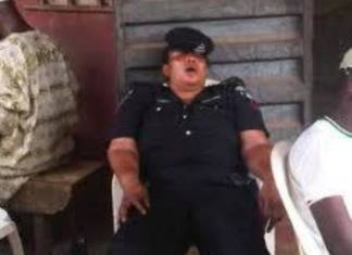 Living In Naija - sleeping policeman