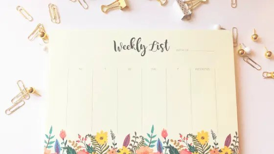 Monthly Wrap Up January 2020 goals