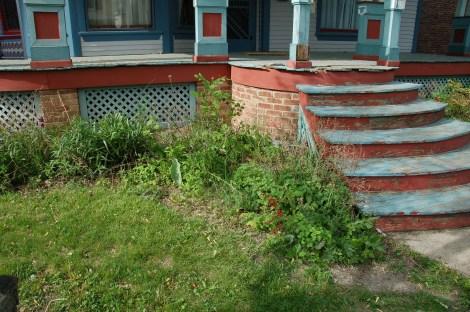 Garden for Blog03