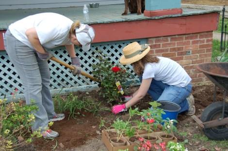 Garden for Blog17
