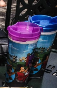 Refillable Drink Mugs. Vivacious Views