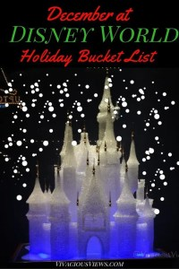Disney World Holiday Bucket List