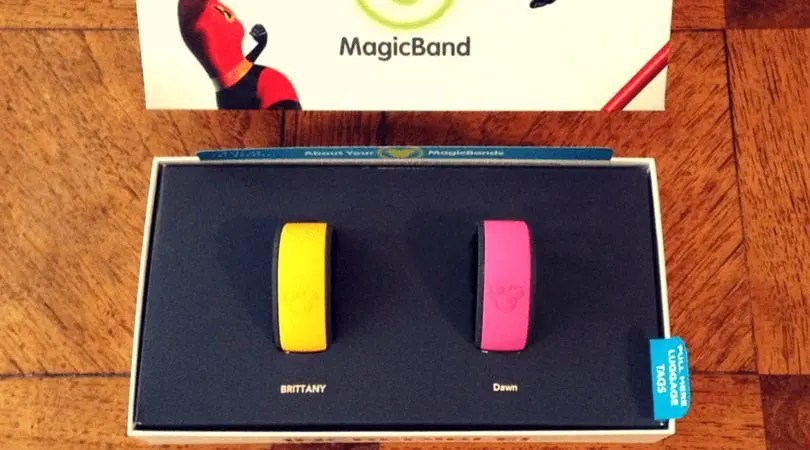 Magic Bands. Disney World. Vivacious Views.
