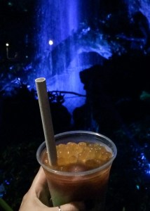 Pongu Pongu. Vivacious Views. Night Blossom Boba Balls