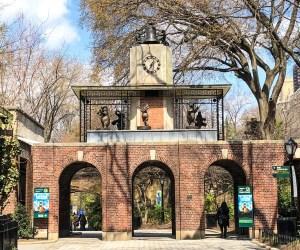 April Trip to New York City. Central Park Zoo. Vivacious Views
