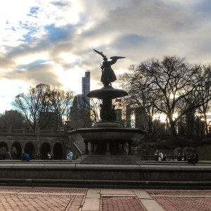Central Park Faves. Angel of the Water. Vivacious Views
