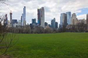 Central Park Faves. Sheeps Meadow. Vivacious Views