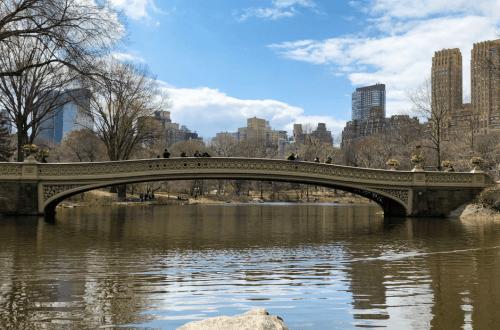 Central Park Faves. Vivacious Views. Travel Blog