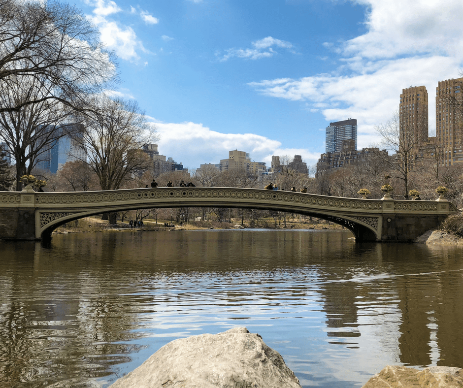 Central Park Faves. Vivacious Views. Travel Blog