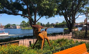2019 Epcot Flower and Garden Festival. Bambi. Vivacious Views