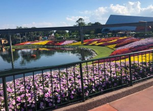 2019 Epcot Flower and Garden Festival. Floating Garden. Vivacious Views