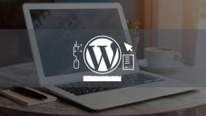 Wordpress Profesional: Como Crear y Promocionar Un Sitio Web