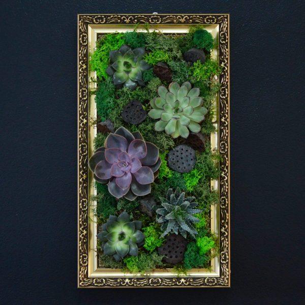 tablou plante naturale, rama lemn si licheeni