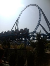 Roller coasters!