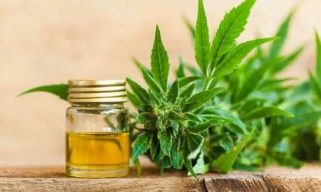 Assessing the Value of CBD in Your Beauty Routine
