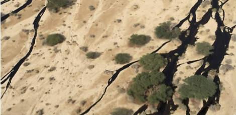 O escapamento, que ocorreu bem ao lado da cidade costeira de Eilat Ministério do Meio Ambiente de Israel