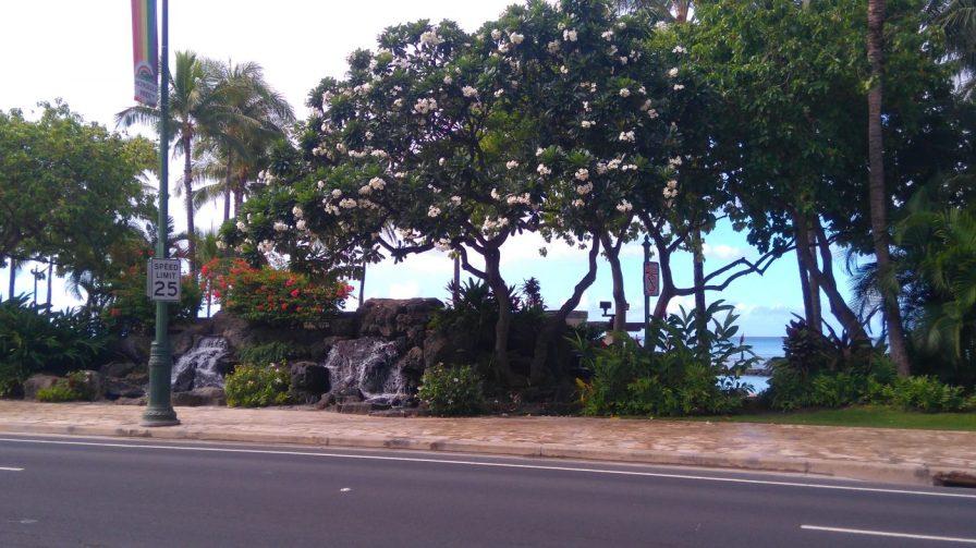 Waikiki beach sidwalk