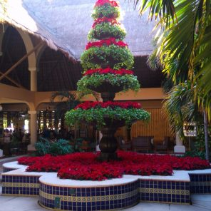 Lobby Colonial
