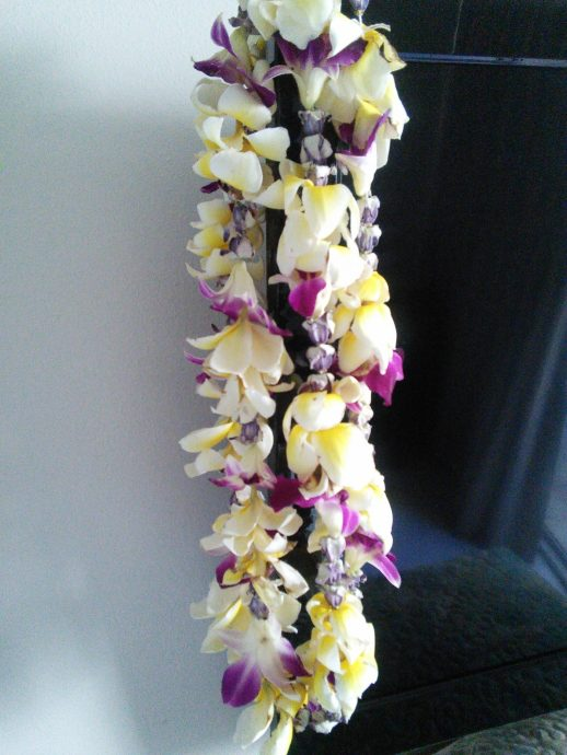 Hawaiian Lei (real flowers)