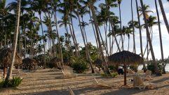 Beach   Praia