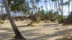 Beach | Praia