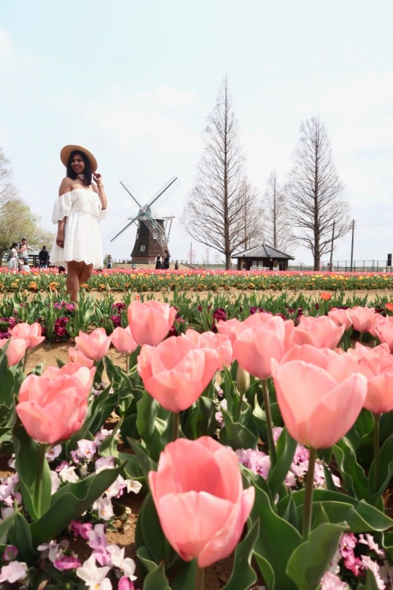 where to see tulips in japan