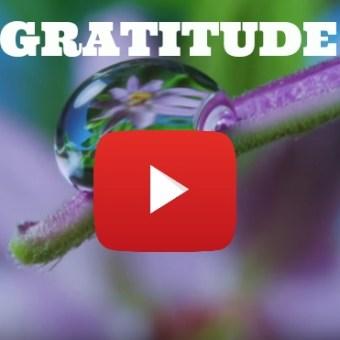 Gratitude Inspirational Video TEDX