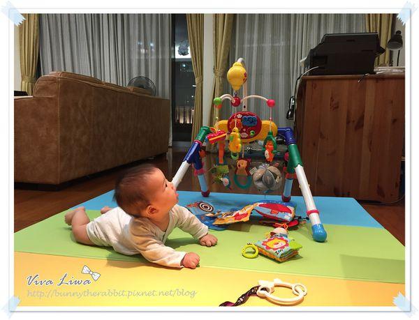 365-35 C/P值最高的寶寶玩具:Toyroyal樂雅健力架