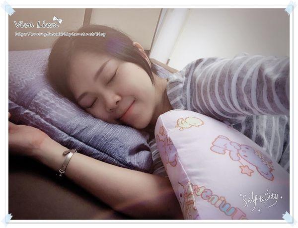 【孕】伴我度過孕期後期難睡日子的好夥伴:Hugsie雙子星防螨孕婦枕
