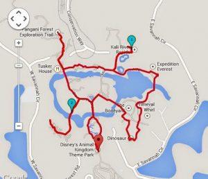 Animal Kingdom 2.27 Miles / 3.65 Kilometers