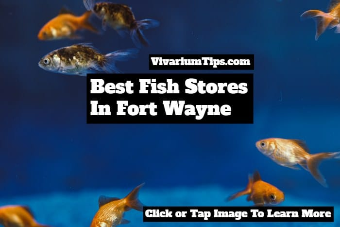 fish stores in fort wayne indiana