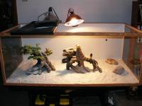 Reptile Heat Lamps & Bulbs - The Best Under 10