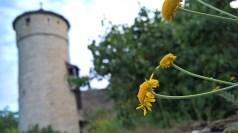 Caminando por la calle Klosterweth, se llega hasta la Strafturm, torre del castigo, una torre un tanto apartado del centro, pero en un lugar idílico de la ciudad vieja.